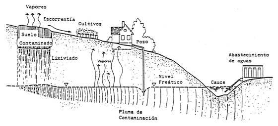 ruta-movilizacion-contaminante